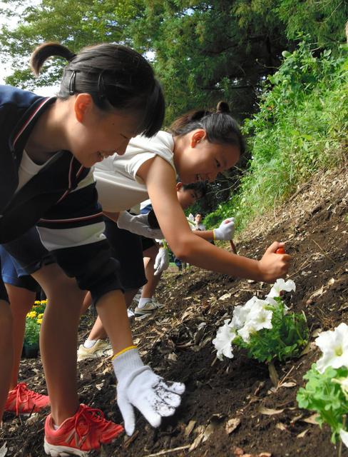 協力して花を植える中学生=千葉市花見川区天戸町