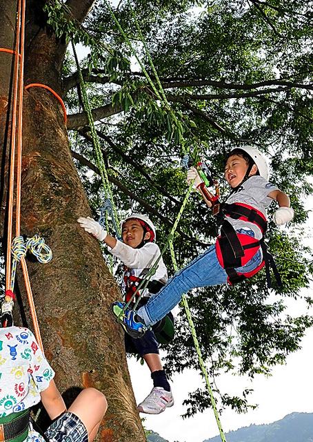 ツリークライミングを楽しむ子どもたち。腰のサドルにかけたロープを引っ張ると登ることができる=神奈川県愛川町