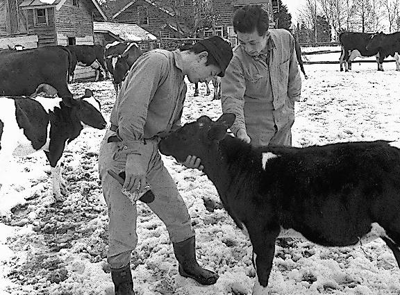 自衛隊法の「防衛用器物損壊罪」に問われた野崎健美さん(右)、美晴さん兄弟=1967年3月、北海道恵庭町