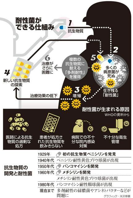 耐性菌ができる仕組み/抗生物質の開発と耐性菌<グラフィック・米沢章憲>