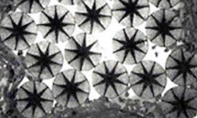 東レの「ボディシェルクール」に使われている独自開発のナイロン糸の断面。黒い星形の部分には、熱をよく伝えるセラミック粒子が詰まっている=東レ提供