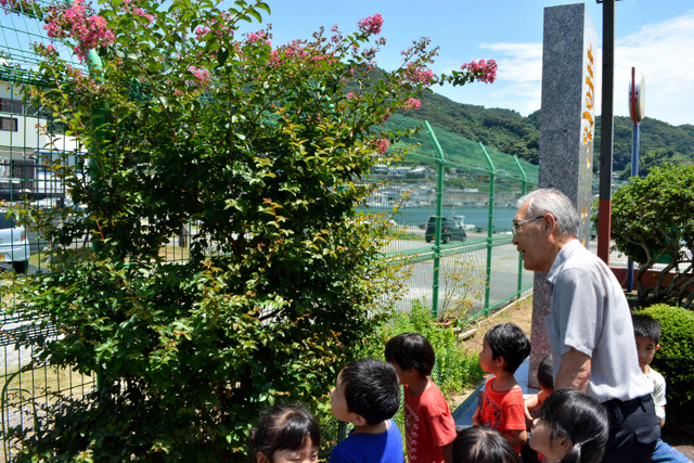 園児たちと、花の咲いたサルスベリを見る武田英一郎さん=長崎市戸石町