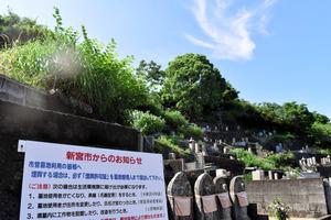 生い茂る草に埋もれ、墓石が見えなくなっているような区画も多い(左上)=新宮市