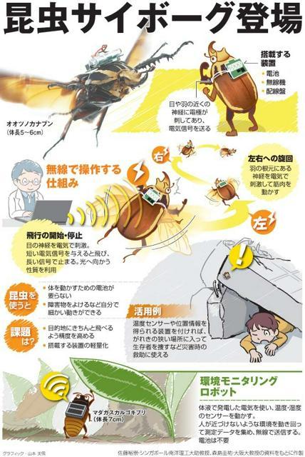 昆虫サイボーグ登場