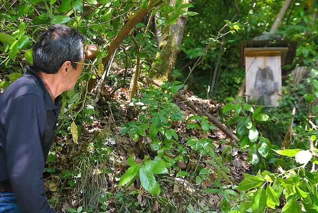 連載で紹介した山崎正志さんが趣味にしていた養蜂のために置いた巣箱=相模原市緑区
