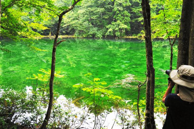 清らかな水をたたえる「龍ケ窪」=津南町谷内