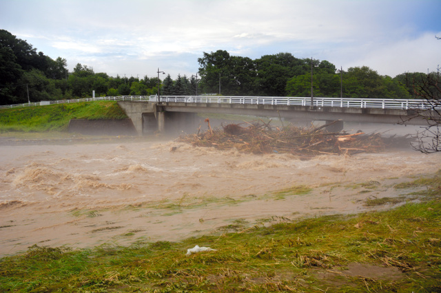 濁流が激しく流れる無加川。橋の下には流木が集まっていた=21日午後4時、北海道北見市留辺蘂(るべしべ)町、石間敦撮影