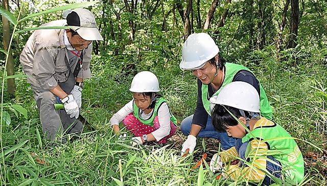 初参加の親子連れは、道具の使い方を教わりながら里山に生えるササを刈った=いずれも横浜市保土ケ谷区
