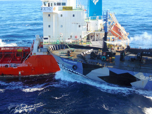 豪団体は捕鯨への妨害続ける姿勢 米とは妨害禁止で合意