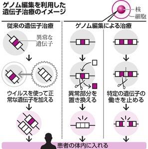 ゲノム編集を利用した遺伝子治療のイメージ