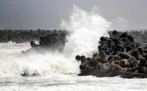東北や北海道、空の便の欠航相次ぐ 台風10号