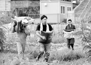 畑に向かう若野達也さん(中央)。農作業担当のスタッフは、介護福祉士だが油圧ショベルも操る=奈良市