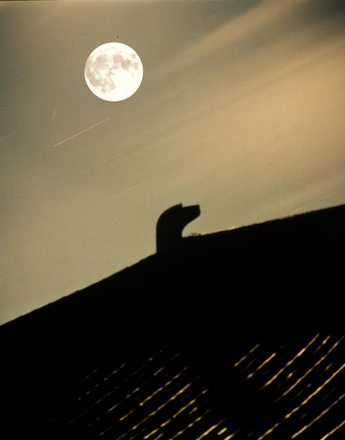 1966年の名月=奈良市