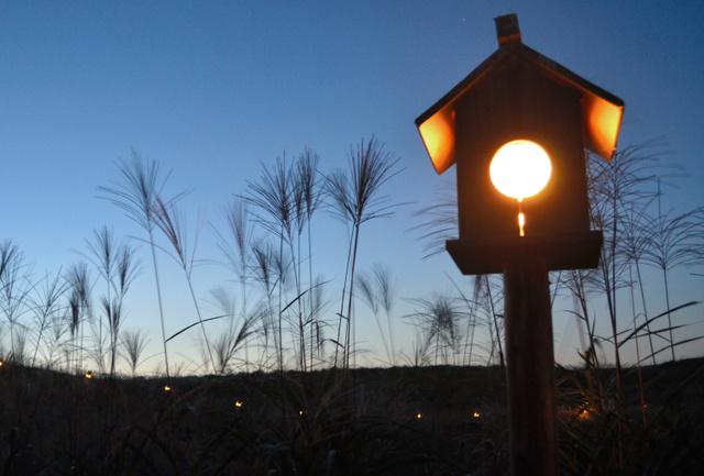 約200基の灯籠(とうろう)で照らす「山灯り(あかり)」=曽爾高原