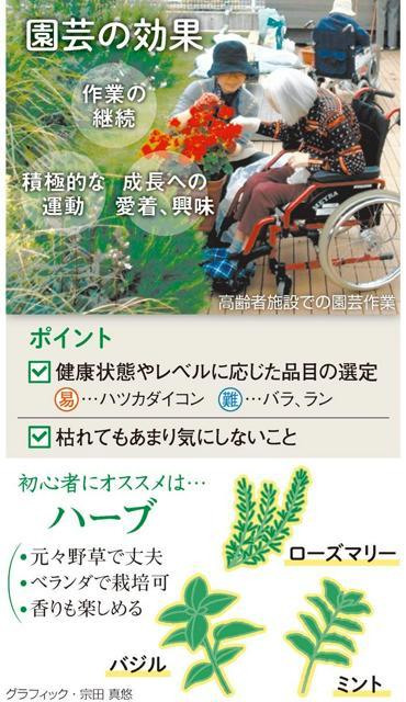 園芸の効果<グラフィック・宗田真悠>
