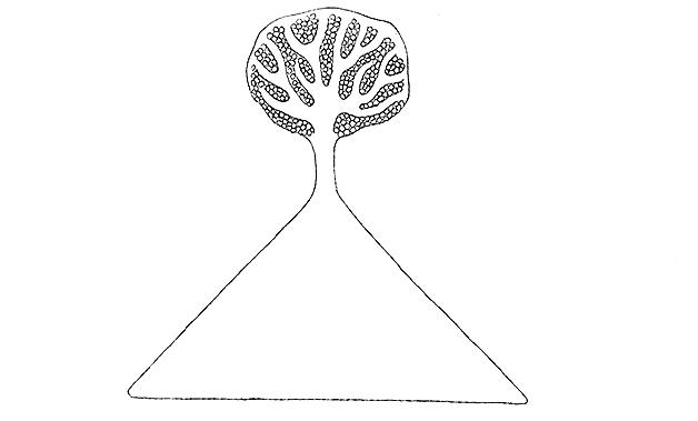 「木に続く道」 絵・皆川明