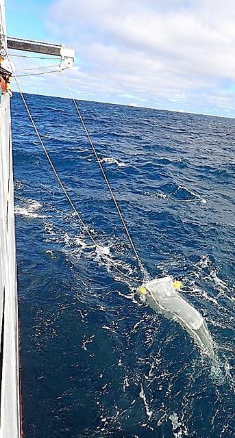 南極海で網を使い、マイクロプラスチックを調査する様子=東京海洋大学提供