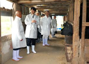 肉牛の飼育状況を視察する秋篠宮さま。左端は池津宏さん(大日本農会推薦の表彰農家)=長岡市王番田町、代表撮影