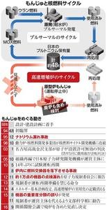 もんじゅと核燃料サイクル/もんじゅをめぐる動き