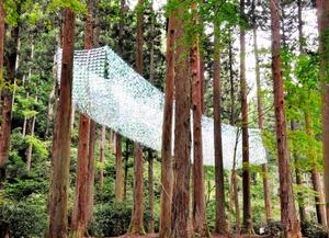 杉林に約20センチ四方のフィルム6千枚を飾った森山茜さんの作品=日立市の御岩神社