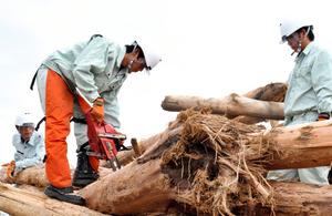 チェーンソーで流木を切る高校生=鹿児島市