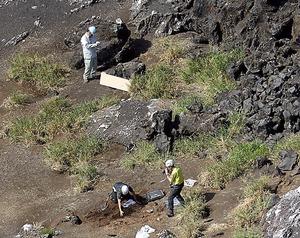 西之島に上陸し、機材を設置し調査を始める研究者ら。陸地には草も見られた=20日午前11時42分、東京都小笠原村