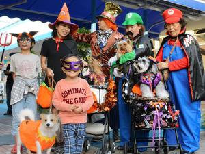 イベントでは人もペットも仮装した=広島市西区