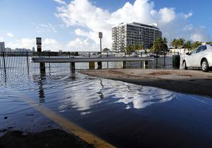 満潮になると海(左後方)の水面が上昇し、市街地まで海水が押し寄せた=15日、マイアミビーチ、矢木隆晴撮影