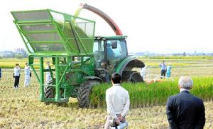 先進事例の視察で農政関係者が見守る中、飼料用稲の刈り取り作業が行われた=前橋市西善町