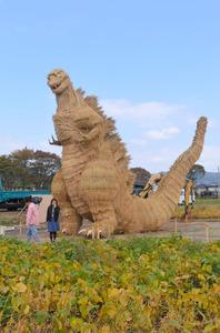 畑の一角に現れたシン・ゴジラ=福岡県筑前町篠隈