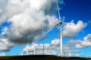 南オーストラリア州スノータウン地区にあるトラストパワー社の風力発電施設。豪州で2番目に大きな規模で、140基近いタービンが回る=郷富佐子撮影