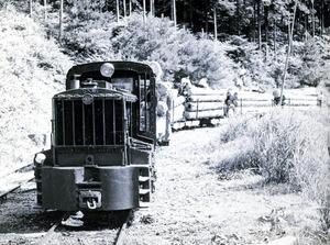昭和10年代~30年代半ばに裏木曽の山々を網の目のように走った森林鉄道。延べ67キロに及んだ=東濃森林管理署提供