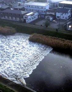 津波が押し寄せて逆流する砂押川=22日午前8時6分、宮城県多賀城市、松本美津紀さん提供