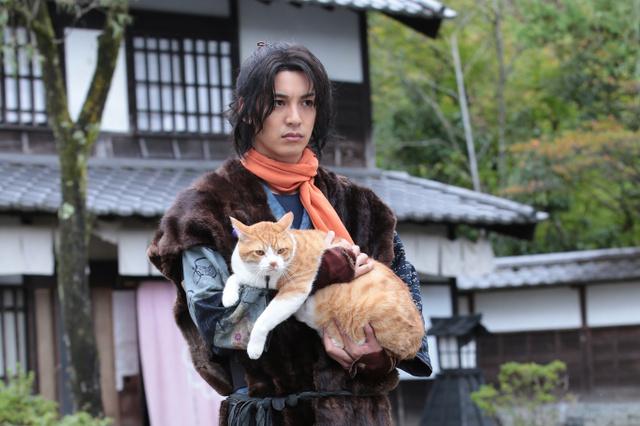 映画公開とテレビドラマシリーズの放送を控える「猫忍」