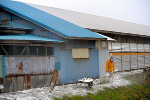 鳥インフルエンザの感染を防ぐために、鶏舎の周りに消石灰がまかれた=五泉市