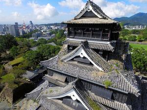 屋根の至る所に草が生えていた熊本城=10月6日、熊本市中央区、金川雄策撮影(市の許可を得てドローンで撮影)