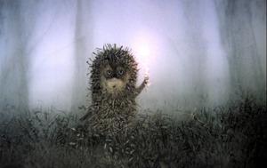 「霧の中のハリネズミ」
