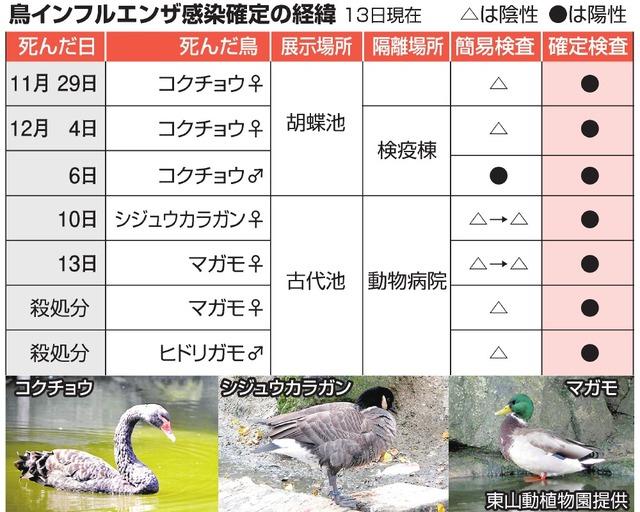 鳥インフルエンザ感染確定の経緯