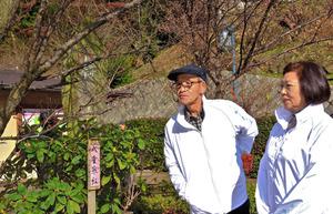 様々な思いを胸に、梅のつぼみを見つめる峯野さん夫婦=15日、熱海梅園