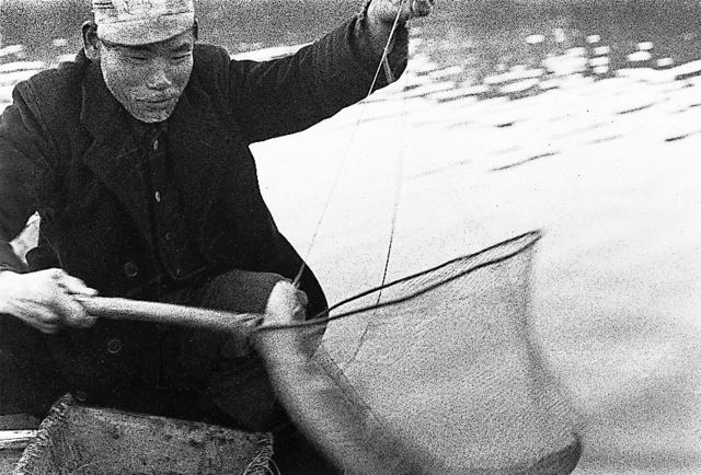 穴子を捕らえて満足げな漁師の坂本実さん=1970年12月、水俣湾、塩田武史さん撮影