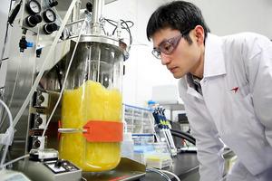 バイオ医薬品につながる基礎研究に取り組むアステラス製薬の研究員=茨城県つくば市、同社提供