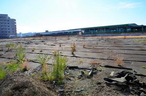 遺跡の保存と整備が計画されている府中本町駅前=東京都府中市