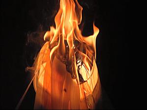投光器を木くずで覆った再現実験では、点灯からわずか2分で発火した=NITE提供