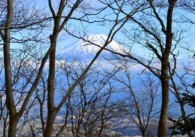 毛無山からの下山中、やっと見えた富士山と朝霧高原。5合目付近から写した。登山道からは枝ごしにしか見えなかった