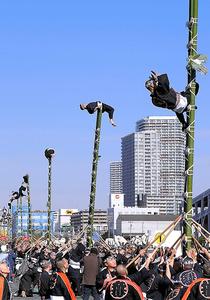 東京消防庁の出初め式で披露された「はしご乗り」=6日午前11時12分、東京都江東区、林紗記撮影