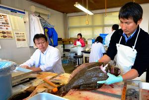 ヒラメの年齢を調べる水産試験場の職員=いわき市
