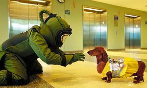 「トッド・ソロンズの子犬物語」