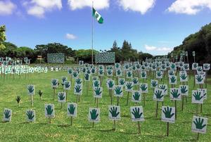 自治廃止に反対する島民らが「民主主義に賛成の挙手を」と広場に並べた手形のカード=ノーフォーク島バーントパイン地区、郷富佐子撮影