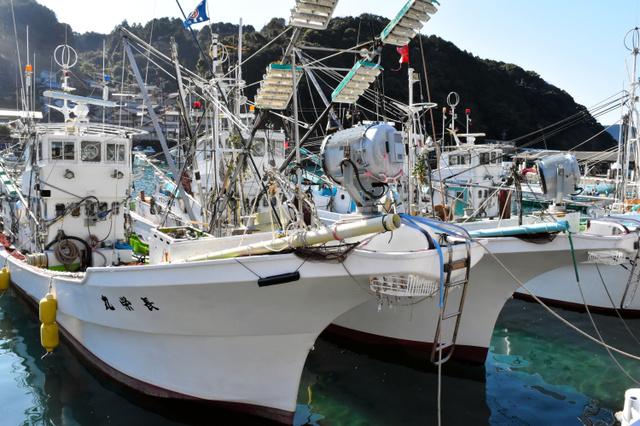 初水揚げへの出港を待つサンマ漁船=三重県熊野市遊木町