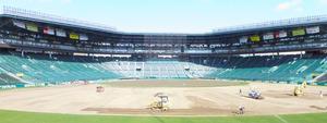 外野の芝生の大部分がはがされた状態の阪神甲子園球場
